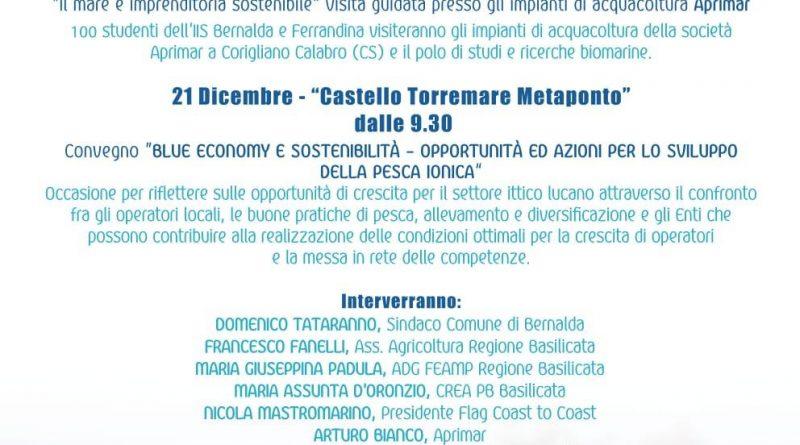 Blue economy e sostenibilità