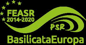 feasr-psr-2020