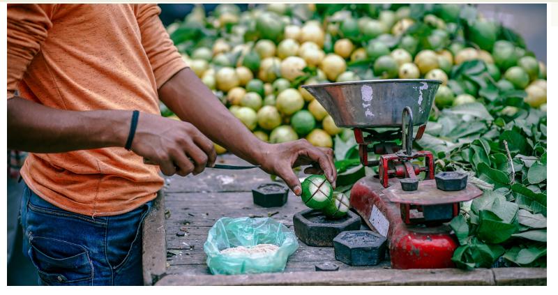 Rete rurale, Call for proposal: Agricoltura Sociale e Immigrazione