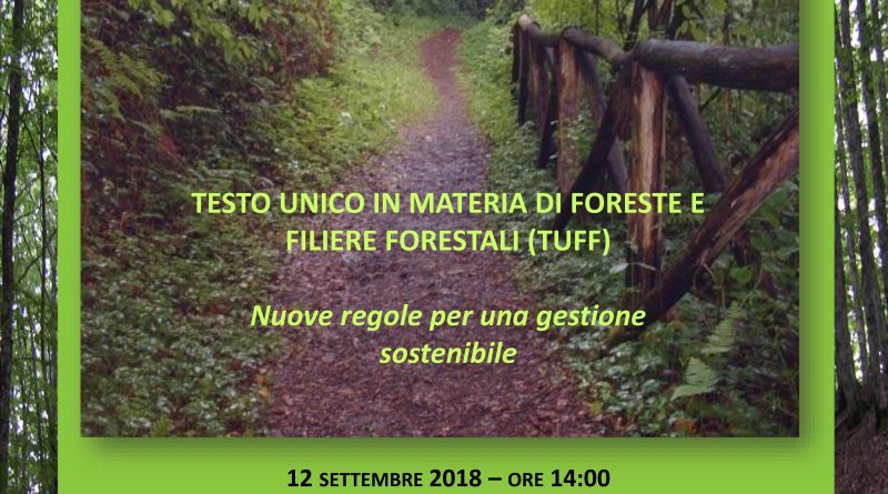 Workshop Matera 12-09-2018 - TU foreste