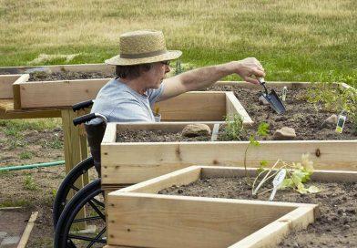 Università Popolare Pollino: Formazione in agricoltura per disabili
